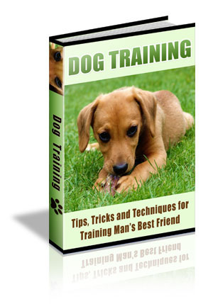 Menifee pet Sitting- Dog training tips eBook