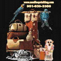 Summer Vacation Pet sitter reservation Menifee California