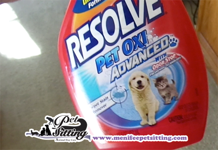 Pet Stain Urine Carpet Cleaner Resolve Reg Deep Clean Cleamer Across Large Areas Of Your