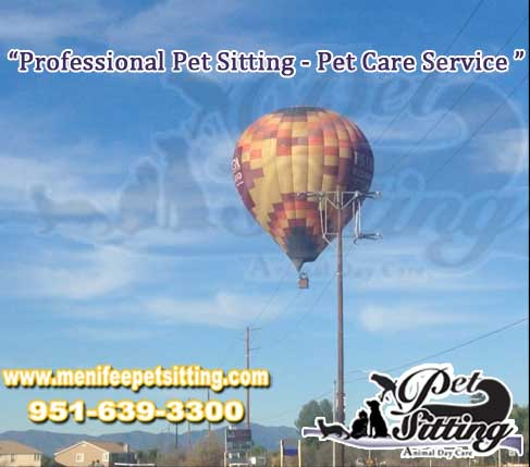 Menifee California Town Hot Air Balloon ride - Menifee Pet Sitting Professional pet Care service