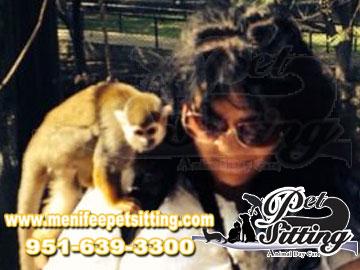 Pet care in Menifee California